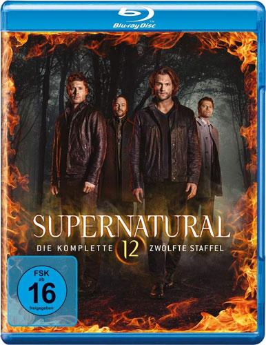 Supernatural - Staffel 12 (BR) 4Discs Min: /DD5.1/WS